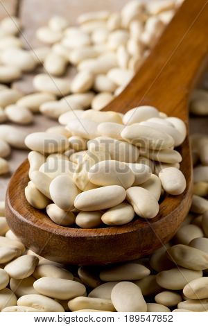 Dried white bean legumes in wooden scoop on stone background