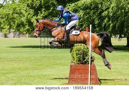 Houghton International Horse Trials Tim Cheffings Riding Jazz Master
