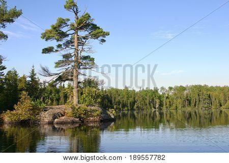 Small rocky island with big pine on calm northern Minnesota lake