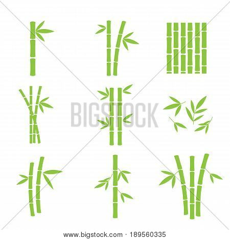 Set of bamboo design elements. Leaves and trunks of bamboo logos. Vector illustration.