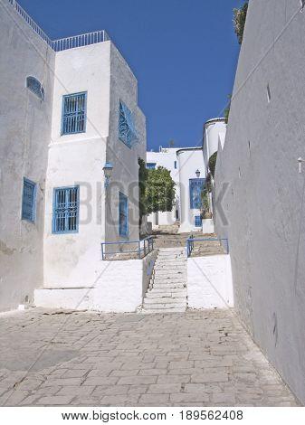 beautiful shutter in traditional village Sidi Bou Said