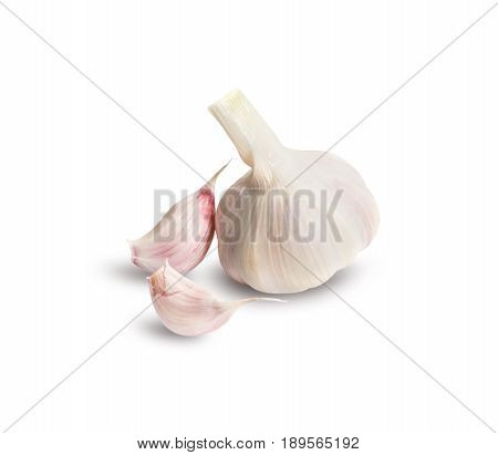 Garlic group and slices. Isolated on white background.