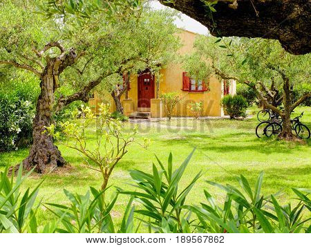 ZAKYNTHOS ISLAND, GREECE, MAY,30, 2016: Family classic yellow red Greek villa appartments hotel villa house cottage among olive trees green garden. Classic Greek house Greece holidays on Greek islands