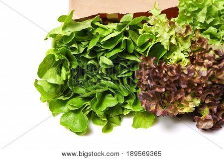 Salad In Paperbag