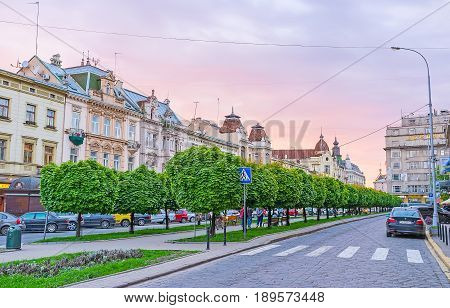 The Park In Shevchenko Avenue