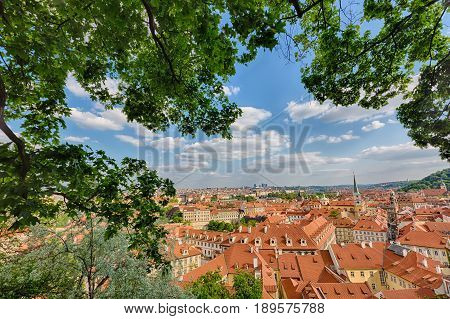 Houses with traditional red roofs and trees in Prague Mala Strana district in the Czech Republic. Trees and green leaves in the foreground.