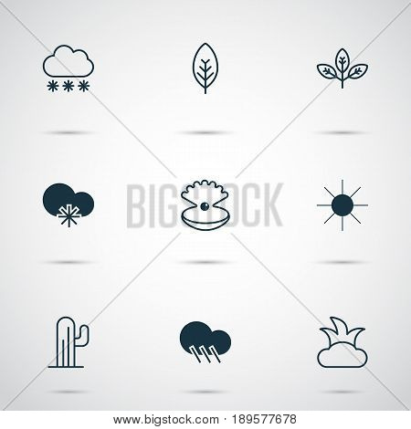 Nature Icons Set. Collection Of Cactus, Sunshine, Snowstorm And Other Elements. Also Includes Symbols Such As Sun, Bush, Snowy.