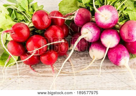 Radish On A White Wooden Background Close Up.