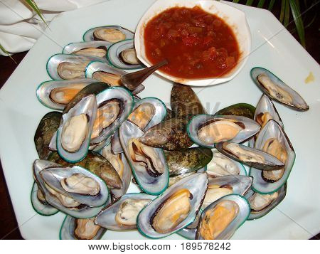 Clam shell salad with tomato sauce dip Clam shells ready to eat served in a white plate, with tomato sauce dipping