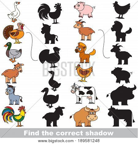 Find True Correct Shadow, The Educational Kid Game.