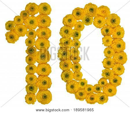 Arabic Numeral 10, Ten,  From Yellow Flowers Of Buttercup, Isolated On White Background