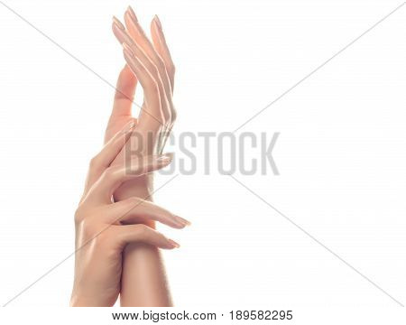 Hand skin care. Closeup of beautiful woman hands with  light manicure on nails . Cream for hands and treatment. Delicate  elegant and graceful hands with slender gracious fingers.