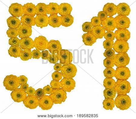 Arabic Numeral 51, Fifty One, From Yellow Flowers Of Buttercup, Isolated On White Background