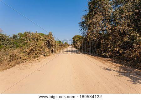 Brazilian dirt road in perspective. Famous Brazilian Transpantaneira dirt road. Pantanal area Brazil