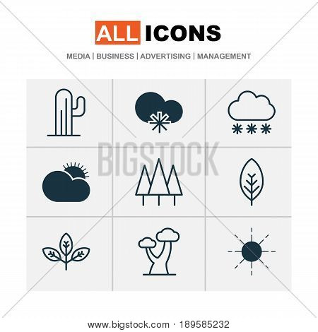 World Icons Set. Collection Of Cactus, Snowstorm, Cold Climate And Other Elements. Also Includes Symbols Such As Leaf, Sunny, Oak.
