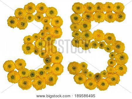 Arabic Numeral 35, Thirty Five, From Yellow Flowers Of Buttercup, Isolated On White Background