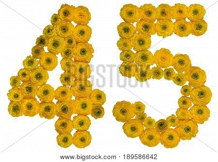 Arabic Numeral 45, Forty Five, From Yellow Flowers Of Buttercup, Isolated On White Background