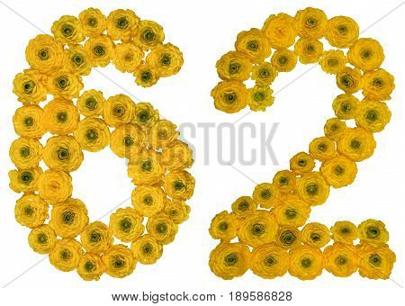 Arabic Numeral 62, Sixty Two, From Yellow Flowers Of Buttercup, Isolated On White Background