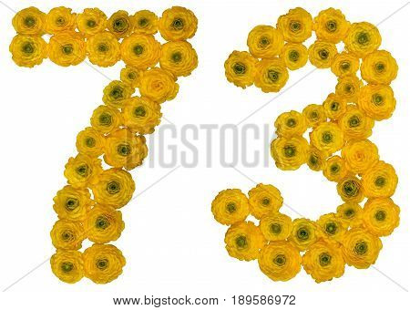 Arabic Numeral 73, Seventy Three, From Yellow Flowers Of Buttercup, Isolated On White Background