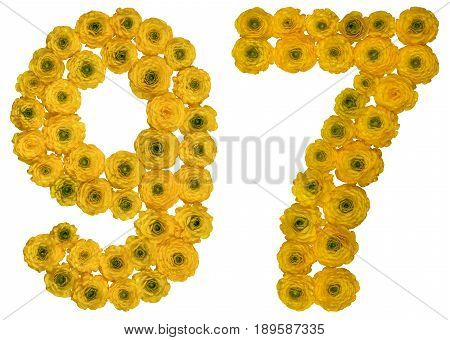 Arabic Numeral 97, Ninety Seven, From Yellow Flowers Of Buttercup, Isolated On White Background