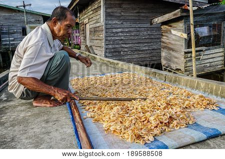 Weston,Sabah,Malaysia-May 28,2017:Fisherman drying shrimps under the sun in floating village of Weston,Sabah,Malaysia.Its traditional way to produce dried shrimp by drying under sunlight.