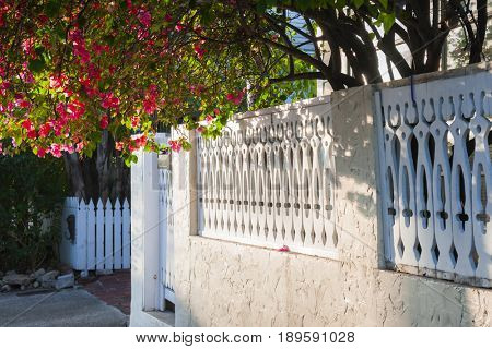 View of white ornate fence with blooming purple bougainvillea in Key West, Florida Keys, USA. poster