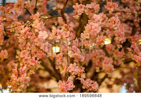 Artificial Sakura Flowers or Cherry Blossoms in Japanese Style for Home and Building Decoration. Soft Focus in Vintage Color Toned.