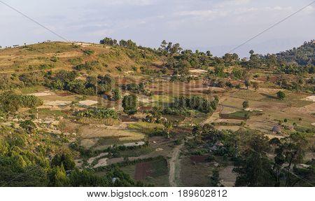Traditional Dorze People Terrace Agriculture. Near Hayzo Village. Dorze. Ethiopia.