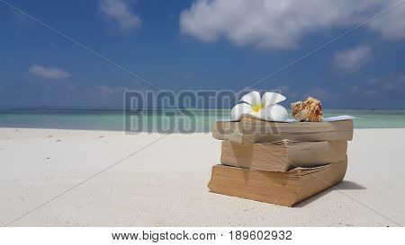 Maldives white sandy beach reading book seashell on sunny tropical paradise island with aqua blue sky sea water ocean