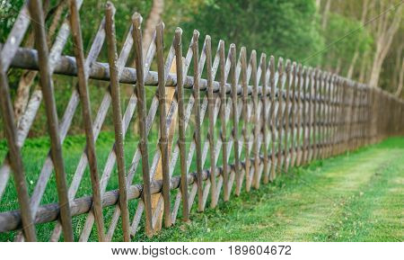 Decorative wooden fence with green lawn and trees. Diminishing perspective selective focus