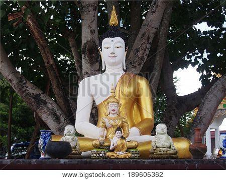 Photo of Buddha statue sitting under Bodhi tree