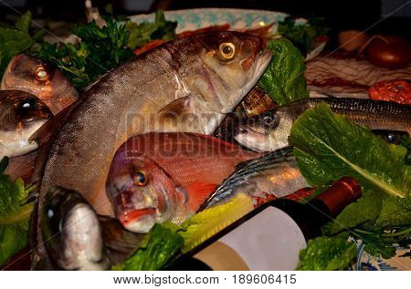 An array of fresh fish sits on display in a fishmongers counter poster