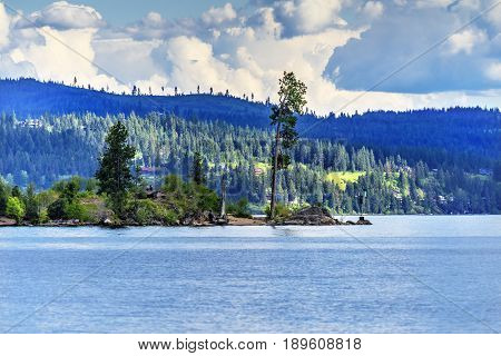 Tree Peninsula Lake Coeur d' Alene Idaho