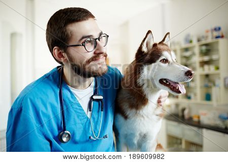Two buddies - husky dog and veterinarian