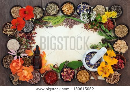 Flower and herb border used in natural alternative herbal medicine in wooden  bowls with essential oil bottle and mortar with pestle on parchment paper and oak background.