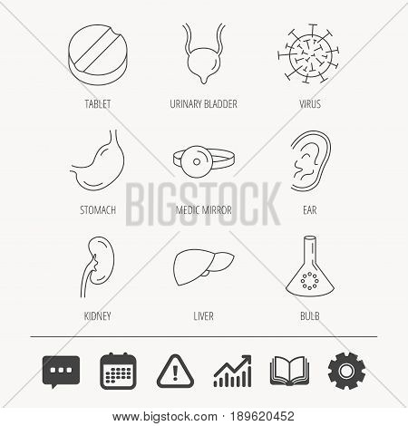 Virus, tablet and stomach organ icons. Liver, kidney and urinary bladder linear signs. Medic mirror, ear and lab bulb flat line icons. Education book, Graph chart and Chat signs. Vector