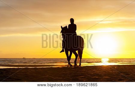 Silhouette of horseriding along the Baltic sea coastline on sunset background. Vibrant multicolored summertime outdoors horizontal image.