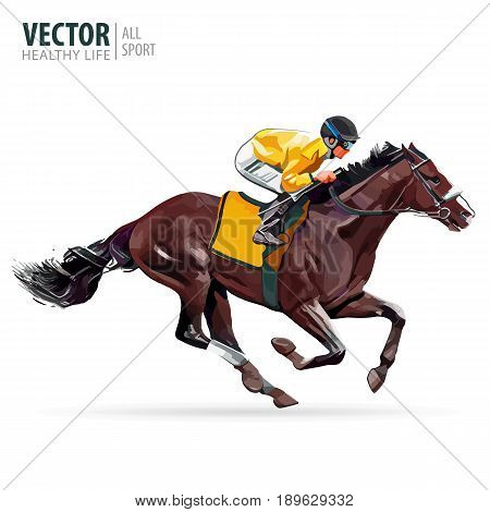 Jockey on horse. Champion. Horse racing. Hippodrome. Racetrack. Jump racetrack. Horse riding. Racing horse coming first to finish line. Vector