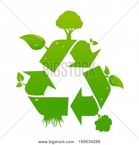 Green recycle signs illustration on white background
