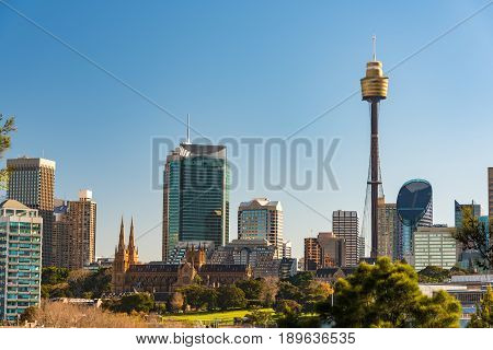 Panoramic View On Sydney Cbd With Sydney Tower And St Mary Cathedral