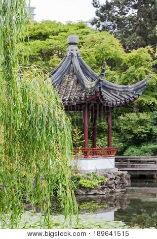 Weeping Willow Tree and Pagoda in a Japanese Garden