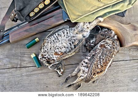 Grouse And Rifle With Cartridges On Board