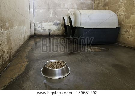 Cage of dogs in a kennel detail of place of animal shelter wading animal mistreatment poster