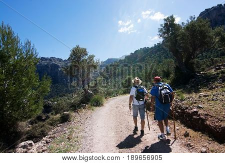 People On Walking Path