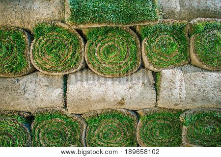 Pile of Rolled Natural Grass Turfs Ready For Installation in a New Garden.