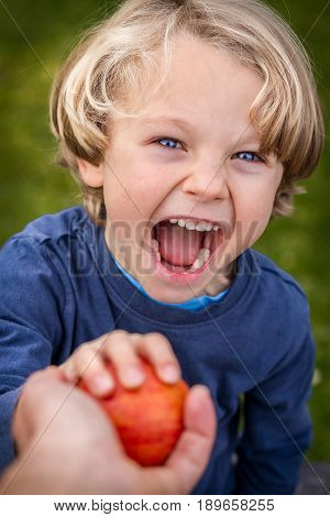 close up of 5 year old child with blonde hair and blue eyes reaching up towards the camera to grab an apple being offered to him