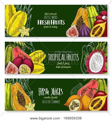 Exotic fruits vector banners set of durian or papaya, tropical feijoa or lychee, banana and rambutan or dragon fruit and mangosteen, orange or lemon and pomelo citrus for fruit juice bar