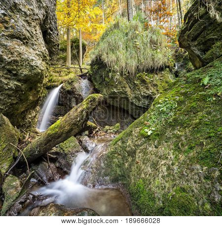 Little waterfall flows through a fairy tale forest in the Allgau Alps.