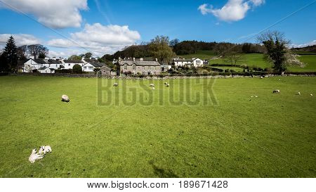 A sunny springtime view of the small Cumbrian village of Near Sawrey in the English Lake District. The village was the home of children's author Beatrix Potter.