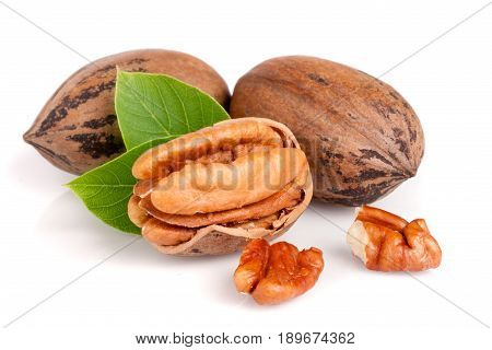 Three pecans with leaves isolated on white background.